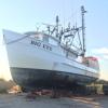 Big Eye Vessel Tuna Longline Boat For Sale